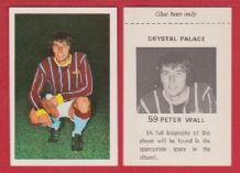 Crystal Palace Peter Wall